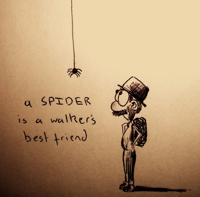 A spider is a walker's best friend