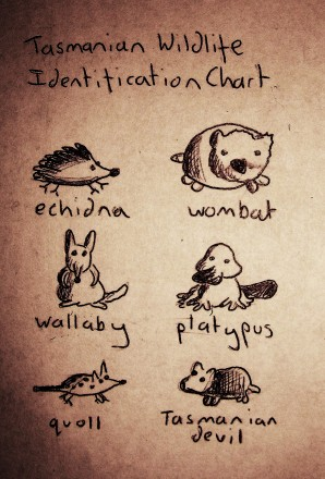 Tasmanian Wildlife Identification Chart