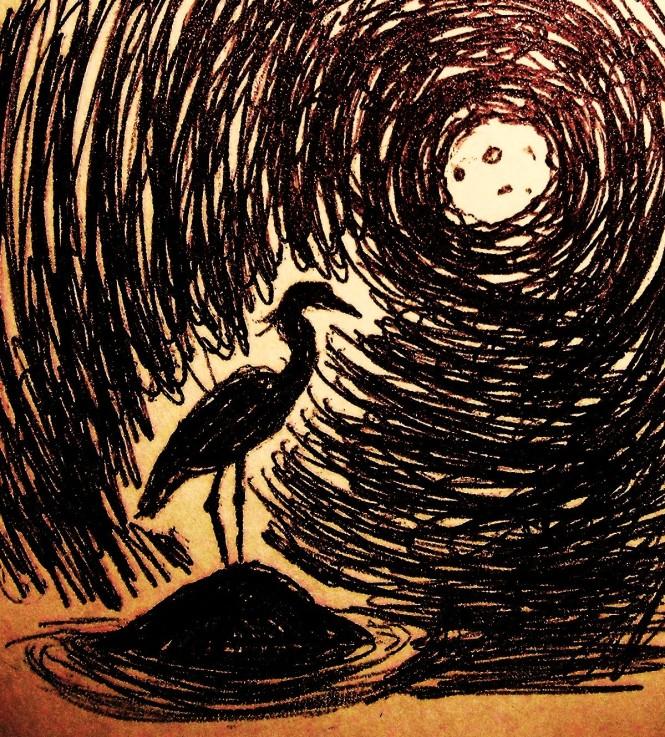 Goodnight Henrietta - heron on a rock