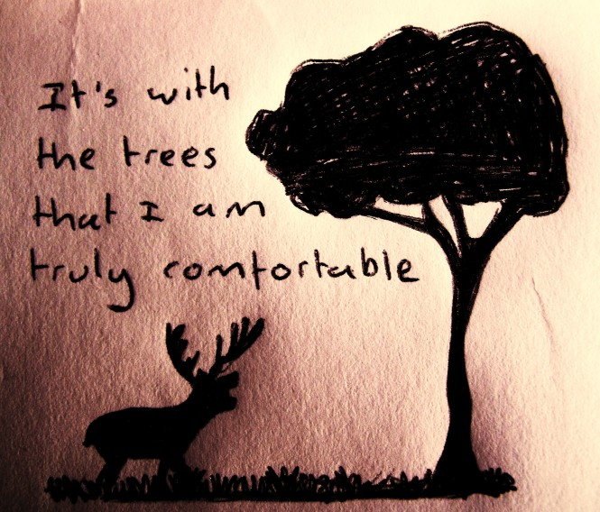 It's with the trees that I am truly comfortable